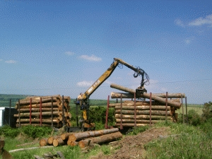 log_delivery_01.jpg (74065 bytes)