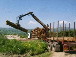 log_delivery_02.jpg (79535 bytes)